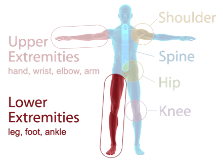 Orthopaedic Associates of Muskegon Specialties - Lower Extremities