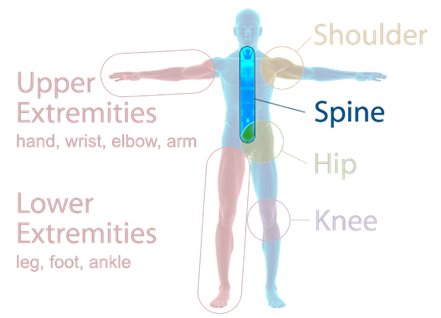 Orthopaedic Associates of Muskegon Specialties - Spine