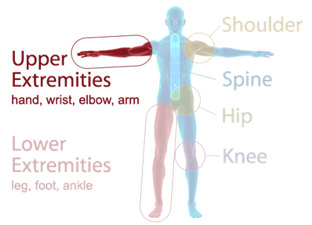Orthopaedic Associates of Muskegon Specialties - Upper Extremities