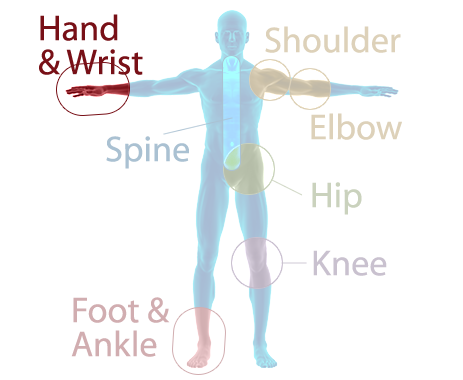Orthopaedic Associates of Muskegon Specialties - Hand and Wrist